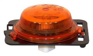 Side Repeater Light   Crown Automotive (55077894AD)